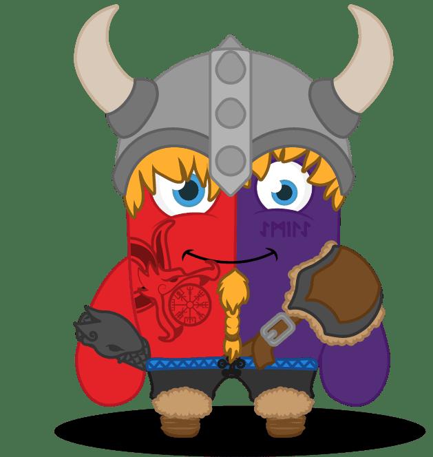 Viking maths